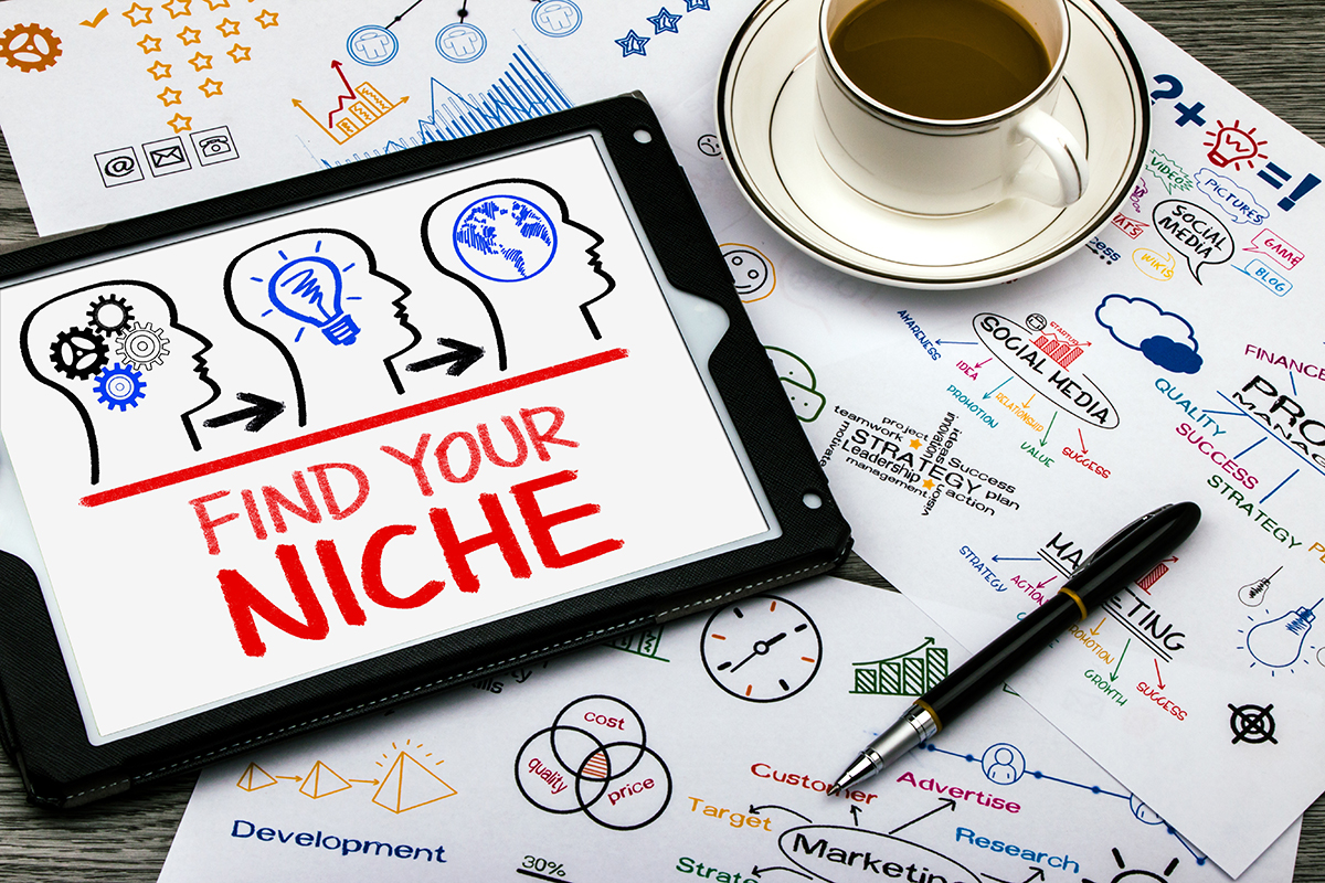 Guide to Choosing a Profitable Niche